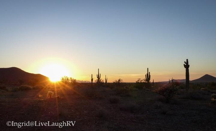 sunrise in the desert southwest