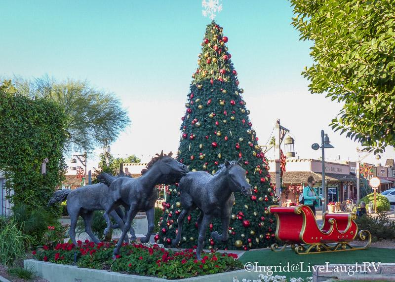 The Yearlings Scottsdale Arizona