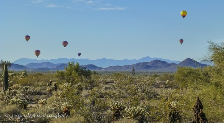 image of the Sonoran Desert with hot air balloons in the sky