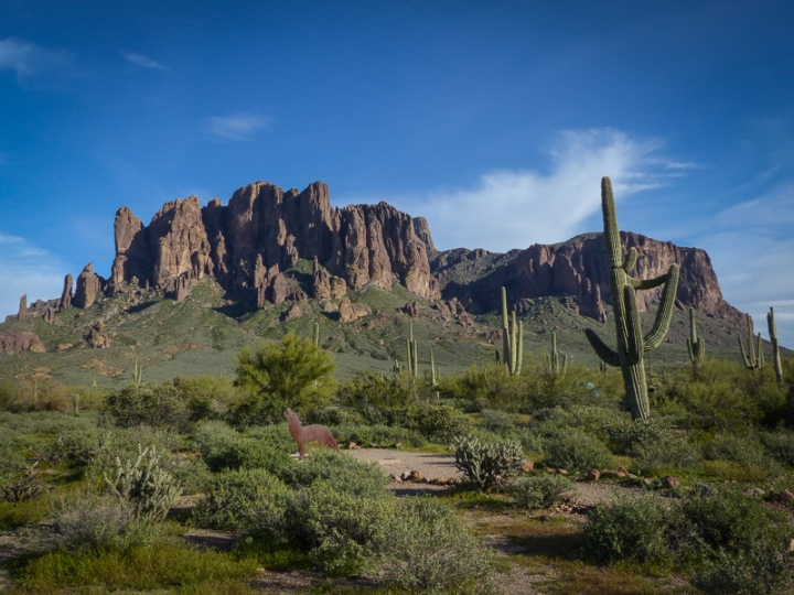 A view of the Superstition Mountains at Lost Dutchman State Park with a coyote sundial and saguaro cactus