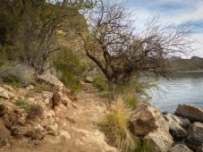 hiking near the shore of Saguaro Lake