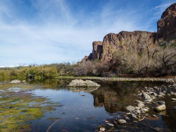 Salt River, Phoenix, AZ