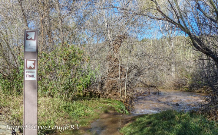 a flooded trail at Spur Cross Ranch, Cave Creek, AZ