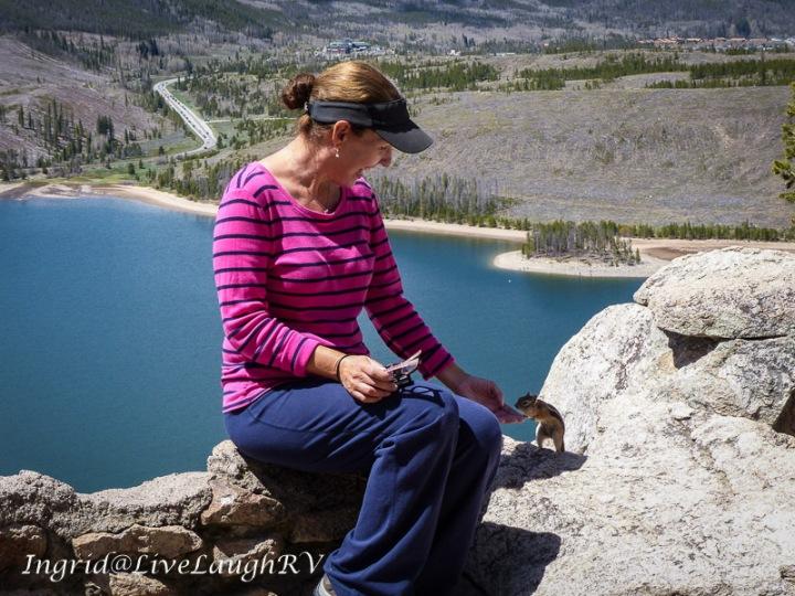 Dillon Reservoir, Colorado scenic drive, friendly chipmunk #chipmunks, #scenic view in Colorado, #Dillon, CO