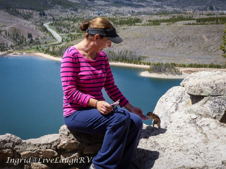 Dillon Reservoir, Colorado scenic drive, friendly chipmunk #chipmunks, #scenic view in Colorado, #Dillon, CO