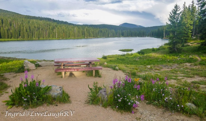camping near Crested Butte, Colorado, at Lake Irwin Campground, wildflowers, a picnic table and mountain lake