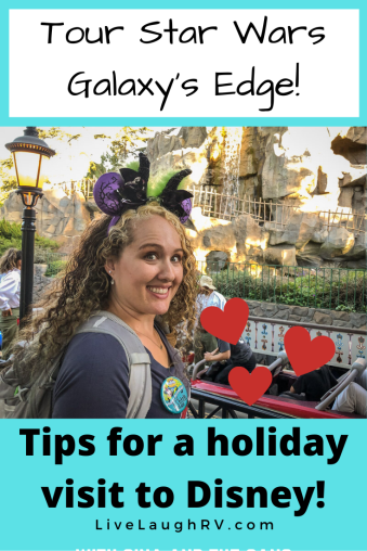 tips for a holiday visit to Disneyland what to eat and where to stay