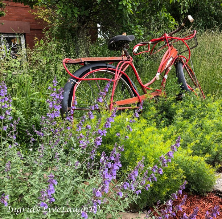 old bicycle in a flower garden