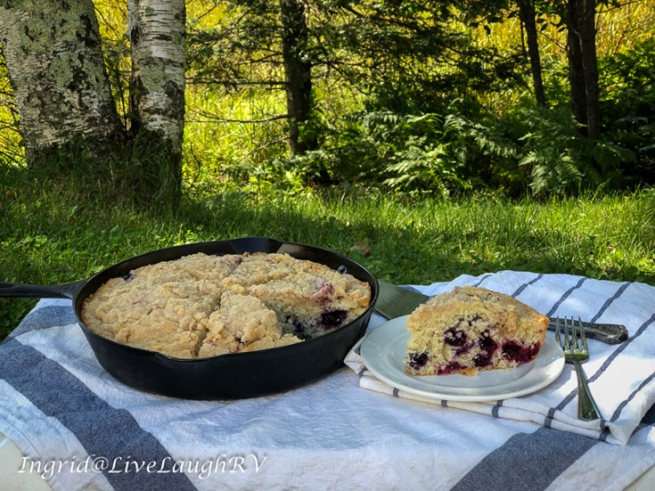 blueberry coffee cake in a cast iron skillet, picnic