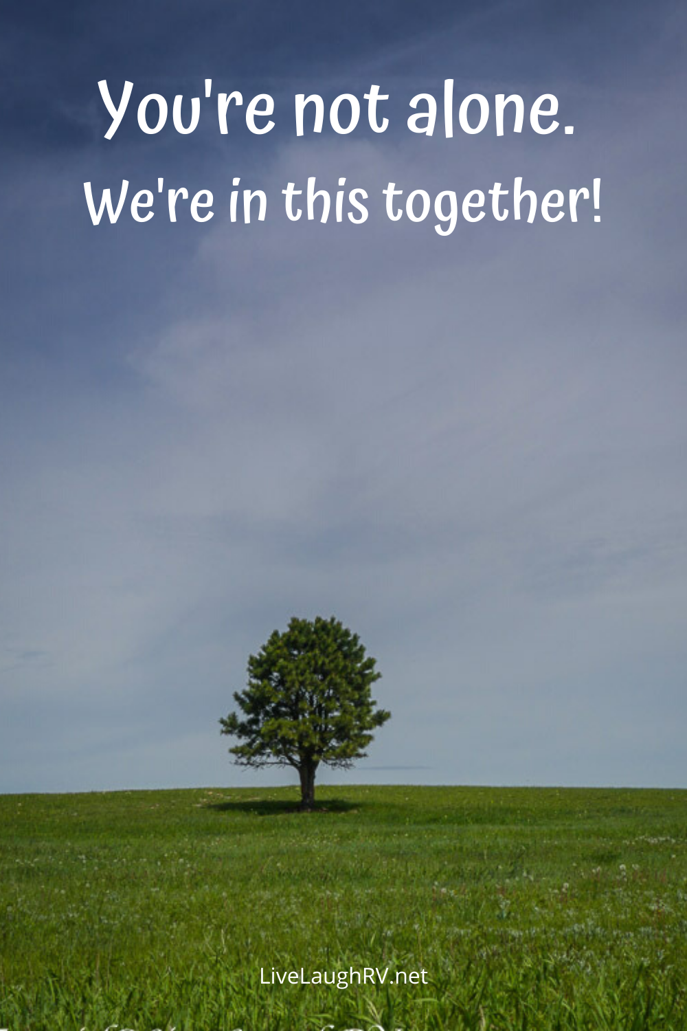 Pinterest pin, lone tree in grassy meadow, inspiration